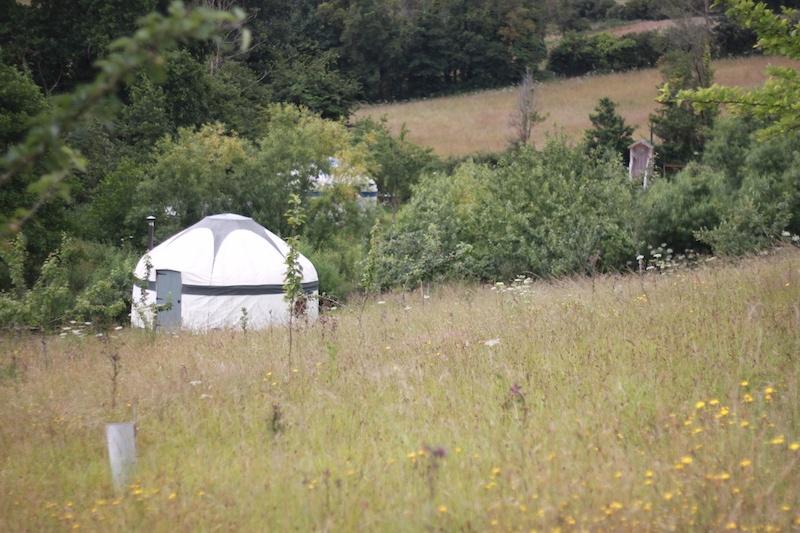 A yurt in a wildflower meadow